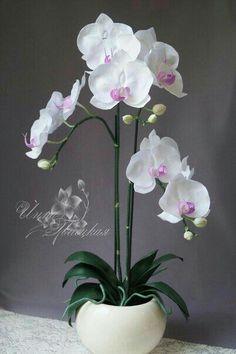 Orchid Flower Arrangements, Orchid Centerpieces, Orchid Plants, Nylon Flowers, Exotic Flowers, Paper Flowers, Beautiful Flowers, House Plants Decor, Plant Decor