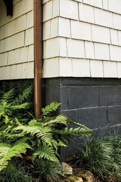 To mimic elegant foundations typical of historic homes, they upgraded plain cinder blocks with dark paint. In time, creeping fig will grow to completely cover the base of the house. Painted Foundation, House Foundation, Foundation Colors, Cinder Block House, Cinder Block Walls, Cinder Blocks, Home Exterior Makeover, Exterior Remodel, Dream Homes