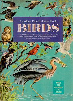 Vintage Golden Book: Birds