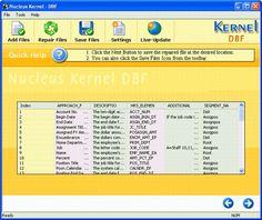 Recovered Data - Screenshots - DBF Database Repair Software