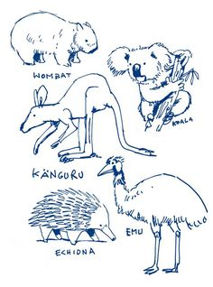 Printable Australian Animals coloring