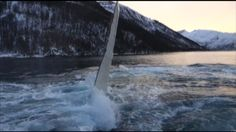 Two men fishing for herring in a Norwegian fjord found they had unwelcomed competition from humpback whales.