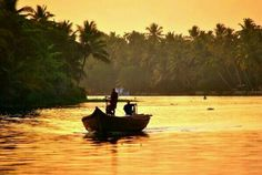 Kerala Backwaters - Alleppy Kerala Backwaters, Insight, Waves, Tours, Outdoor, Outdoors, Ocean Waves, Outdoor Games, The Great Outdoors
