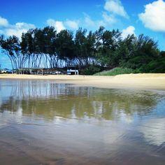 Sodwana Summer Loving, Coast, Elephant, Beach, Water, Outdoor, Water Water, Outdoors, Seaside