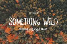 Something Wild by MediaLab.Co on @creativemarket