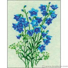 Clochettes bleues - RIOLIS