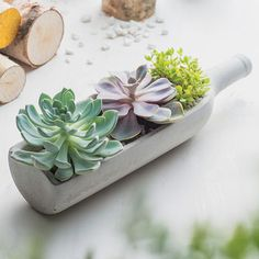 Concrete Wine Bottle Planter