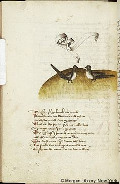 Literary, MS M.763 fol. 167v - Images from Medieval and Renaissance Manuscripts - The Morgan Library & Museum