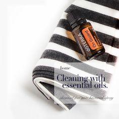 esssential oil antibacterial1