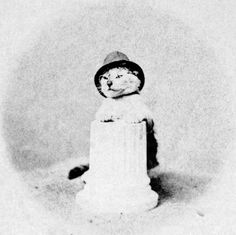 Cat in hat and glasses c. 1871