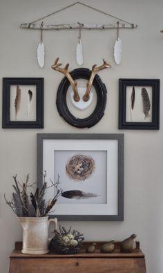 I need those quail!!!    Bird love. Nature love. CA quail.                                         Shabby Love: Feathered Gallery Wall