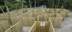 Bellingham maze, Sunny Coast.  Features: Timber panel maze, rope maze, tyre maze, mini golf*, walk-through aviary, puzzles, picnic area  BBQs available.  Hedge maze available Dec 2014.                       Open 7 days a week, 9.30am to 4.30pm (school hols)      PRICES Adults $16 (or $25 with mini golf), children (3-16) $12.50 (or $12.50 with mini golf)