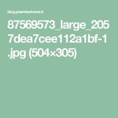 87569573_large_2057dea7cee112a1bf-1.jpg (504×305)
