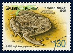 THE PROTECTION OF WILD ANIMALS AND PLANTS, Toads, Animals, Green, Ivory, Brown, 1995 01 23, 특정야생 동·식물 보호특별, 1995년01월23일, 1803, 두꺼비, postage 우표