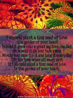 Love garden quote via www.Facebook.com/gratitudinals