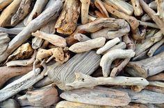 Treibholz bearbeiten, aber wie? Du hast Treibholz gefunden und möchtest ein paar Tipps haben, wie Du das Holz richtig trocknest und behandelst, bevor es zur Verarbeitung kommt?