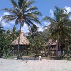 Playa brava parque tayrona,colombia