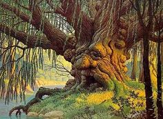 Hildebrandt Brothers - Tolkien 'Old Man WIllow' 1978 by Plum leaves Aragorn Y Arwen, Legolas, Minas Tirith, Nature Landscape, 70s Sci Fi Art, Willow Tree, Weeping Willow, Green Man, Middle Earth