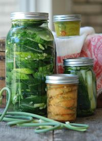 Fermented Cucumber Pickles - This is supposed to be an easy way to make a good, crisp garlic pickle. Yum.