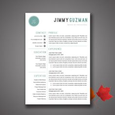 Resume Template For Ms Word  Resume Template And For M