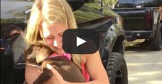 Brides: This Puppy Proposal Video Is Every Girl's Dream Come True