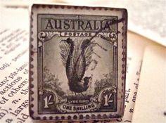 1932 Lyre Bird Australia Vintage Stamp is Set in by SilverGypsys, $48.00
