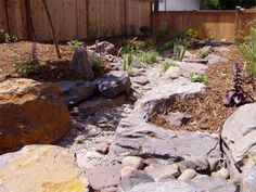 A Rain Garden may be the perfect idea for the draining swale in our backyard. Combined with a dry stream bed would be perfect.