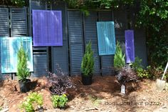 Need privacy but can't afford a new fence? Build a privacy screen from upcycled shutters - Dogs Don't Eat Pizza