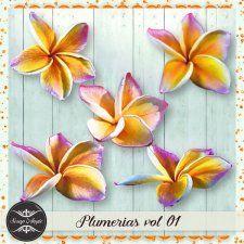 Elements - plumerias vol 01 by Scrap Angie #CUdigitals cudigitals.comcu commercialdigitalscrapscrapbookgraphics
