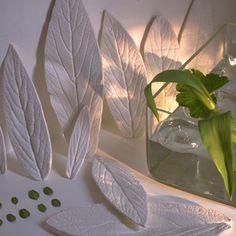 Des feuilles d'arbre moulées en plâtre