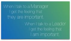 Manager / Leader