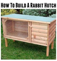 The critters on pinterest golden retrievers australian for How to build a rabbit hutch plans free