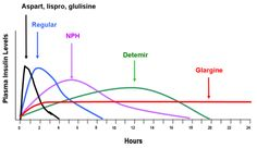 Idealized insulin time-action profiles after subcutaneous injection of insulin aspart, insulin lispro, insulin glulisine, regular insulin, NPH insulin, insulin detemir, and insulin glargine.