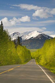 Cassiar Highway, British Columbia, Canada.