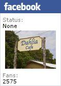 Dahlia Cafe Liberty Hill, Texas