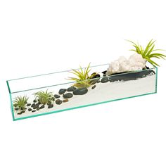 This crystal wave terrarium is a feng shui karma cleanser that will balance and revitalize the physical, mental, emotional and spiritual…
