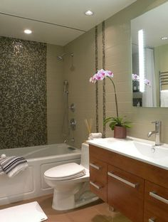 Small Bathrooms Design Ideas, Pictures, Remodel, and Decor - page 217