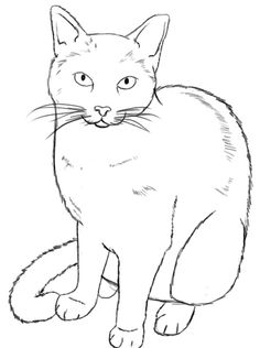 How To Draw A Cat ~ Draw Central