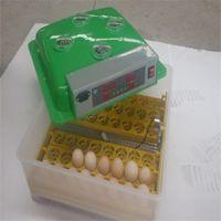 hedef 48 yumurtalı kuluçka makinesi