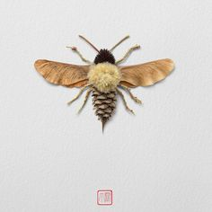 An illustration by artist Raku Inoue who uses garden waste including sticks, seeds and petals, to create his Natura Insects series. nature crafts A garden alive with art: all-natural insect sculptures – in pictures Art Et Nature, Nature Crafts, Fall Crafts, Nature Artists, Land Art, Art For Kids, Crafts For Kids, Pine Cone Crafts, Leaf Crafts