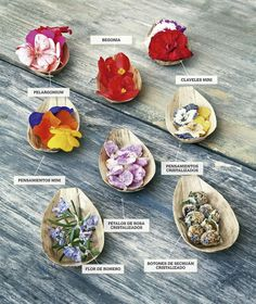 flowers can make the difference Honey Recipes, Chef Recipes, Cooking Recipes, Healthy Recipes, Food Plating Techniques, Number Cakes, Beautiful Fruits, Flower Food, Edible Flowers
