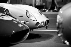 Ferrari 250 GTO (Guillaume Tassart)