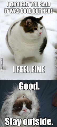 cold outside...