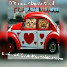 Good Night Wishes, Good Night Quotes, Happy Birthday Wishes Cake, Afrikaanse Quotes, Goeie Nag, Goeie More, Morning Pictures, Morning Pics, Special Quotes