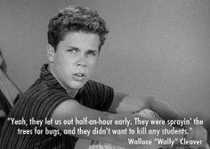 """Wally Cleaver from """"Leave it to Beaver."""" I thought Tony Dow was so, so very cute back then. Vintage Tv, Vintage Stuff, Vintage Photos, Old Tv Shows, Movies And Tv Shows, Tony Dow, Leave It To Beaver, Vintage Burlesque"""