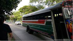 MiBus prepara acciones inmediatas para mejorar el transporte público http://www.inmigrantesenpanama.com/2016/03/31/mibus-prepara-acciones-inmediatas-mejorar-transporte-publico/