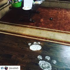Rabbit footprints leading to the Easter basket
