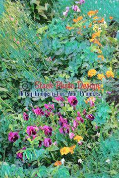 Floral Background 10 -
