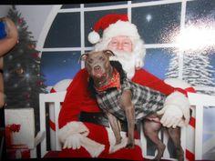 Santa!!!! He knows him.