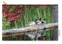 Follow The Leader Carry-all Pouch featuring the photograph Follow The Leader by Cynthia Guinn